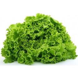 BATAVIA-salade